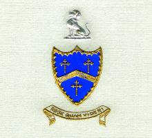 Sturges Family Arms